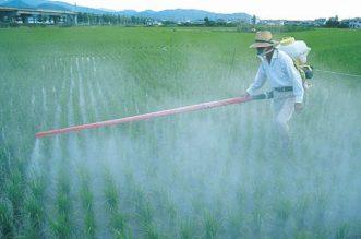 Ce sunt pesticidele?